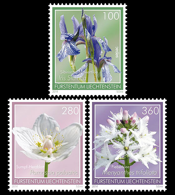 Bog Flowers- (Set Mint) Set