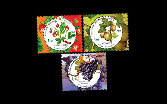 Croatian Flora 2010 – Fruits  SI