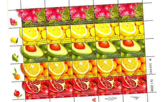 Fruit Special Sheet SI