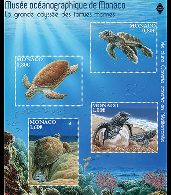 Sea Turtles- (M/S Mint) Miniature Sheet