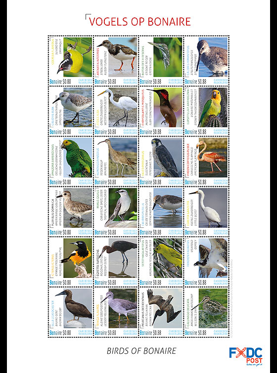 Birds of Bonaire Sheetlets