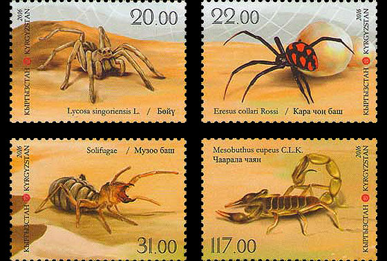 Fauna of Kyrgyzstan - Spiders Set