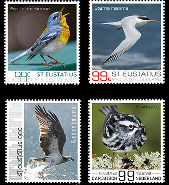 Birds of St. Eustatius Set