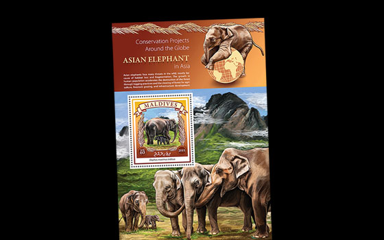 Asian Elephant Conservation SI