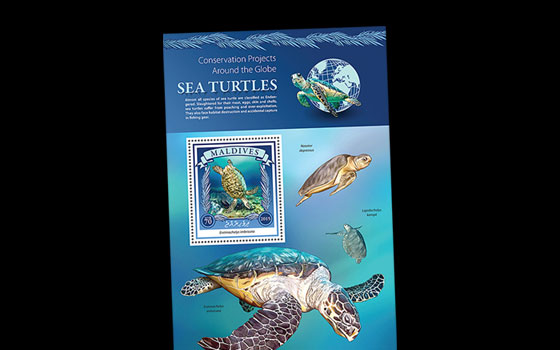 Sea Turtle Conservation SI