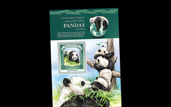 Panda Conservation in China SI