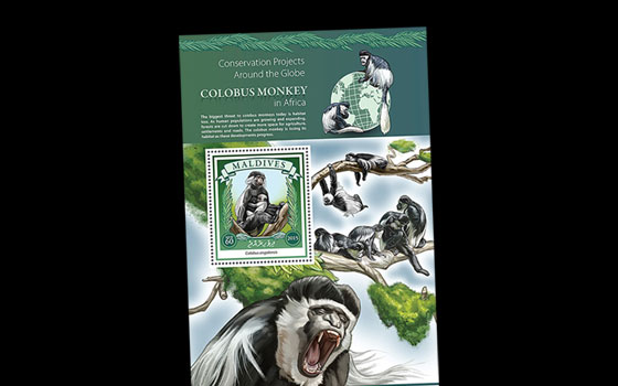 Colobus Monkey Conservation in Africa SI