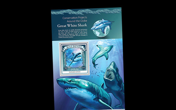 Great White Shark Conservation SI