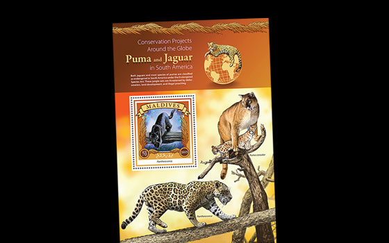 Puma and Jaguar Conservation in South America SI