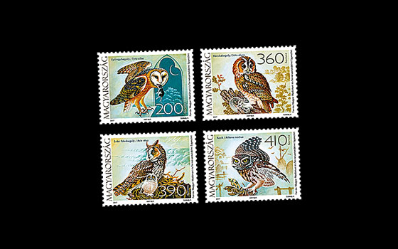 Fauna Of Hungary - Owls SI
