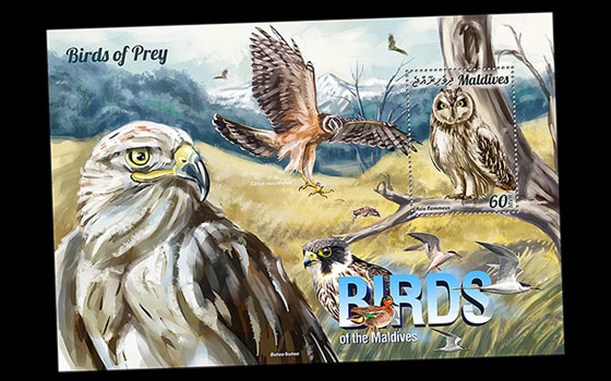 Birds of Prey SI