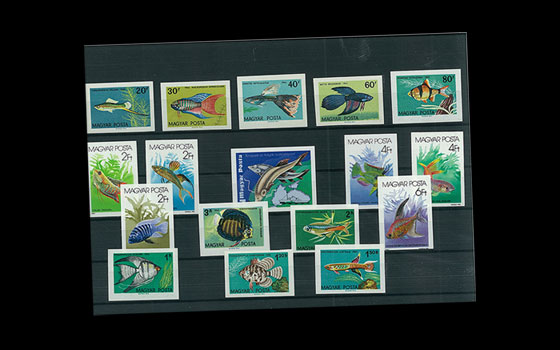 Imperforated Thematic Sets - Fish