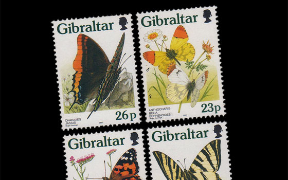Butterflies in Gibraltar  SI