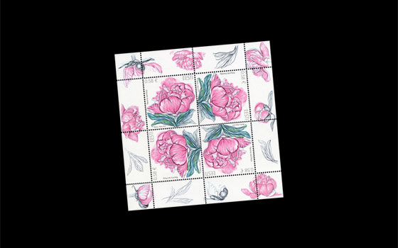 Flower Stamp - Peony SI